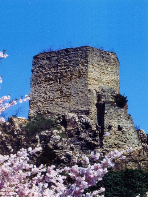 Burg vor der Restaurierung
