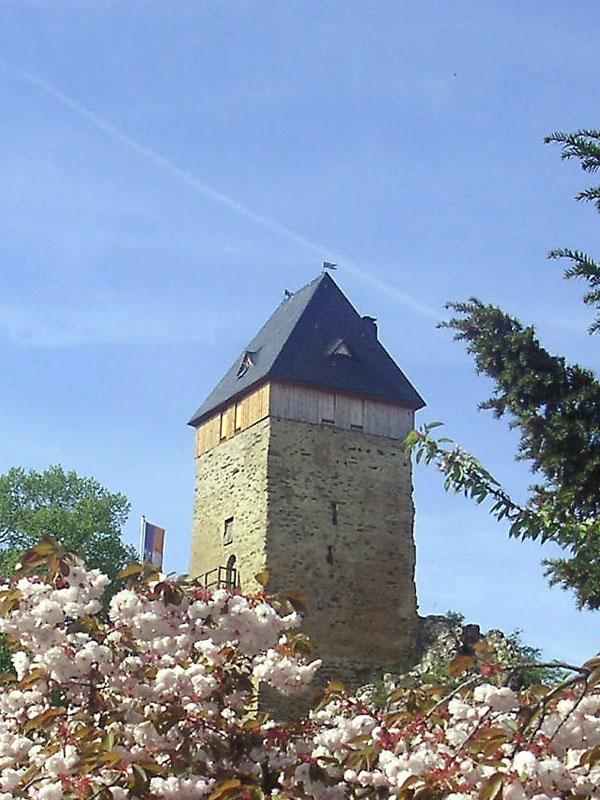 Burg im Frühling